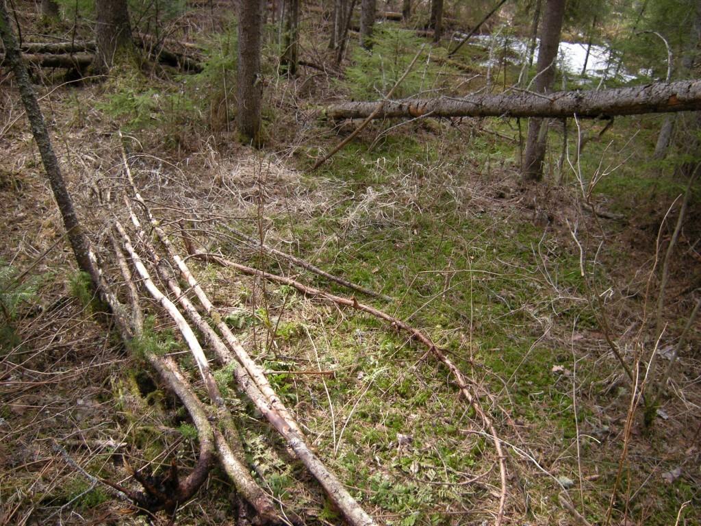 Строим шалаш в лесу