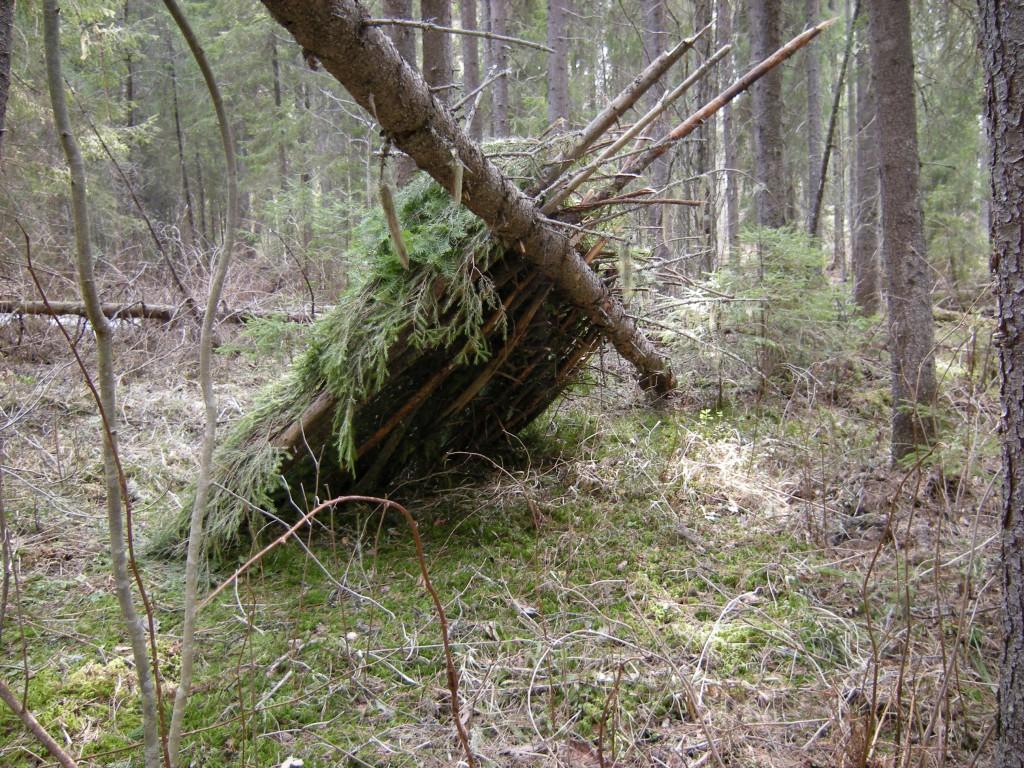 схема лесного шалаша