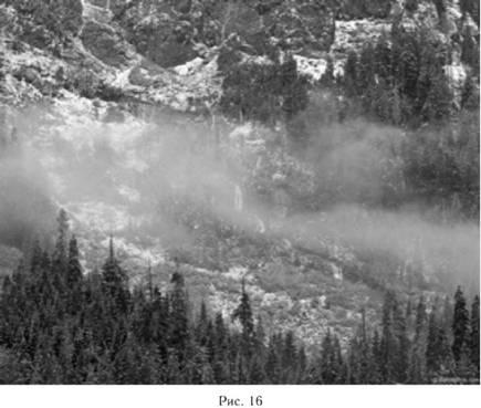 Предсказание погоды по туману