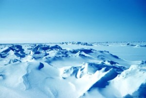 География Арктики