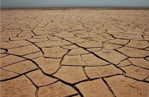 Заболевания в пустыне