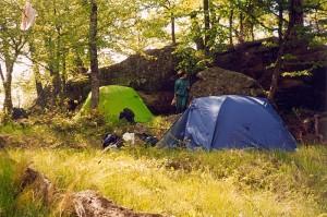Какие бывают палатки