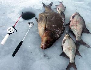 Особенности ловли леща на водохранилищах