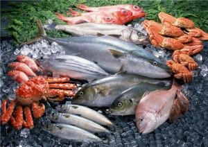 Добыча пищи на берегу моря