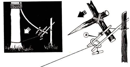 Пружинная колющая ловушка