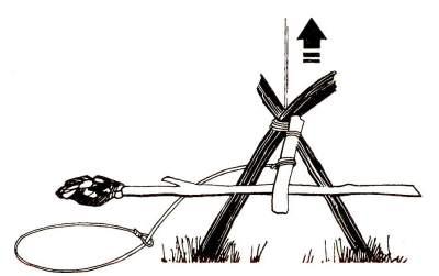 Верхний конец клеванта упирается в вилку подставки, а нижнему его концу мешает пройти через вилку рычаг с приманкой, расположенный между клевантом и вилкой, - давление клеванта удерживает его на месте.