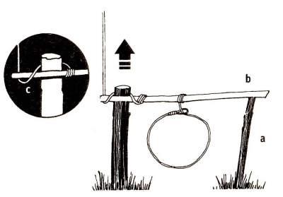 Обратите внимание, как «спусковой» участок веревки крепит один конец рычага петли (Ь), в то время как второй его конец лежит на подпорке (а). «Спусковой» участок веревки располагайте около самого конца рычага петли.