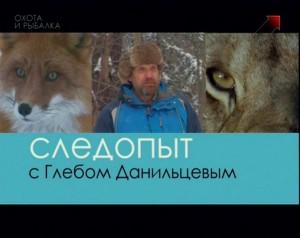 Серия 16. Следовые дорожки зимних псовых.
