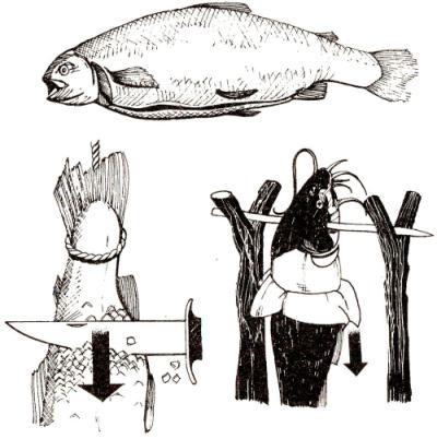 Обработка пойманной рыбы