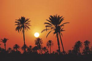 Опасности теплового климата
