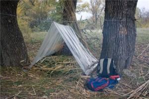 Тренировки выживания в лесу