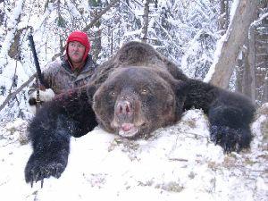 Охота на бурого медведя