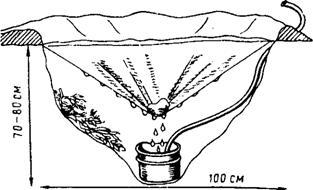 ПУСТЫНЯ: ПОИСК воды