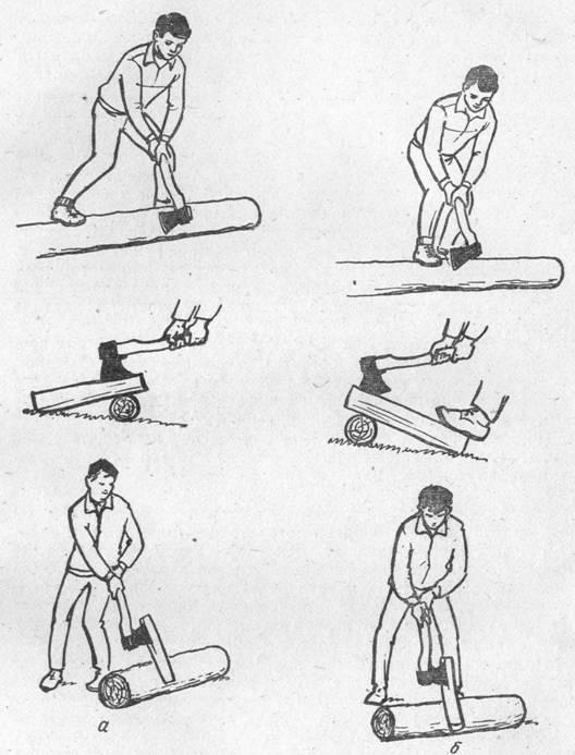 Выбор и заготовка дров