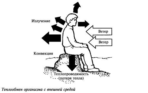 Неблагоприятные природное факторы и защита от них