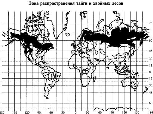 Тайга равнинная и горная. Физико-географическая характеристика таежной зоны
