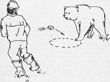 Отпугивание медведя