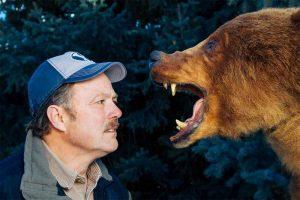 когда медведи нападают на людей