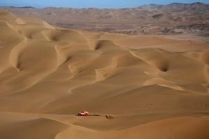 Выживание в Сахаре