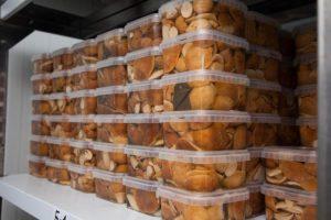 Транспортировка, хранение, переработка грибов