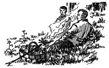 Культура сбора грибов