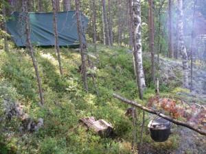 Обустройство комфортного лагеря в лесу
