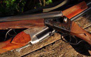Какой охотничий карабин выбрать новичку?