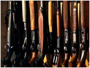 О выборе ружья