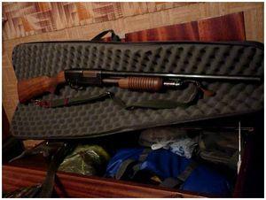 Прирученное ружье
