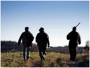 Становление охотника: путь не усыпан розами