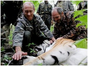 Годовщину президентства Путин отпраздновал с амурскими тиграми