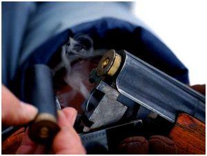 Как стрелять по бекасам