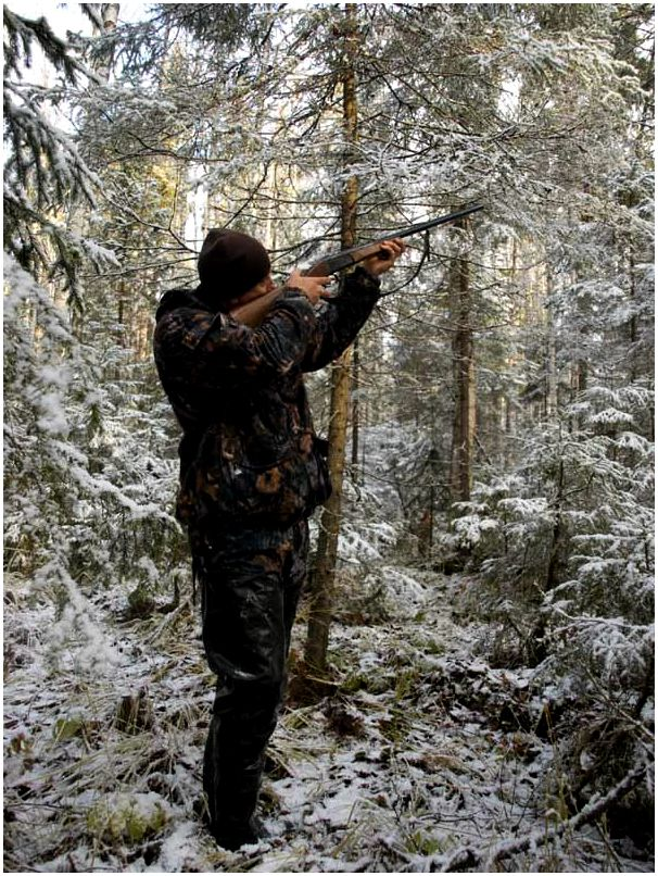 Начинающим охотникам
