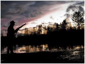 О культуре охоты