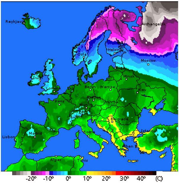 О зимовке вальдшнепа во Франции: горячие новости