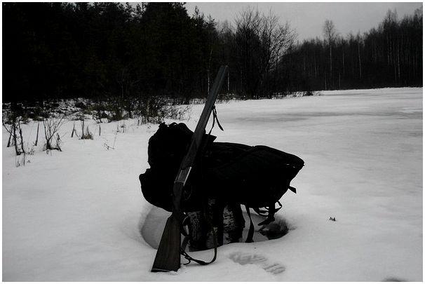Очерк зимнего дня