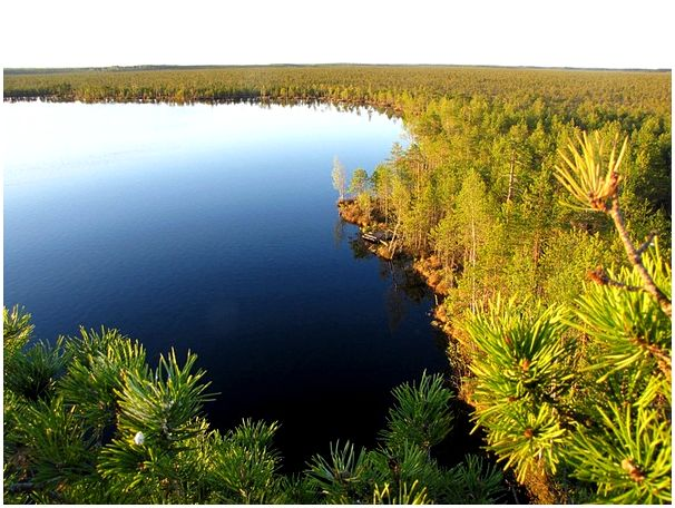 Озеро моё...