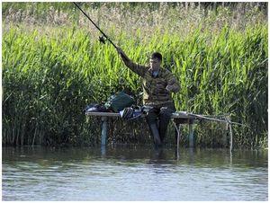 Секреты ловли крупного карася в теплой воде