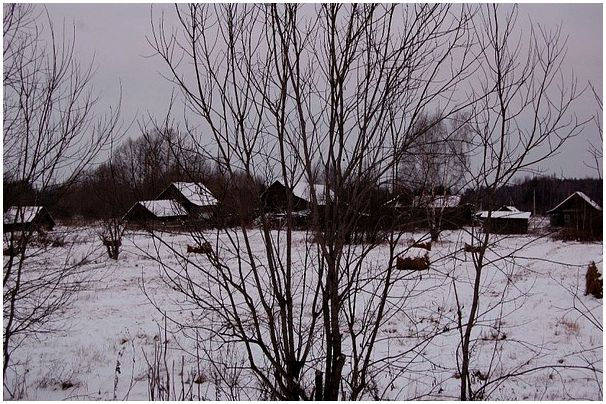 За лосем в Тверскую
