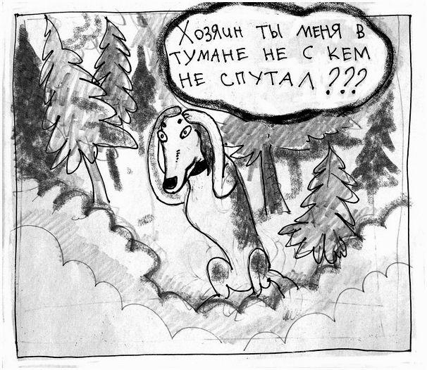 Заяц в тумане