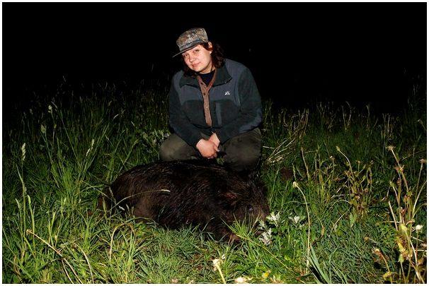 Два эпизода одной охоты в Беларуси