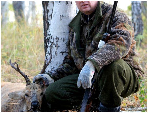 Лаконичный отчет о не простой охоте