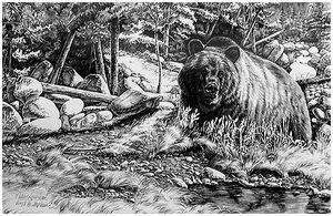 Охота  намедведя