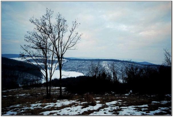 По лесам, полям Чехии и Венгрии