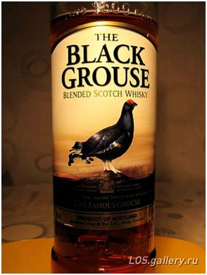 Тетерев. The Black Grouse.