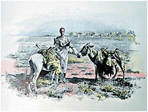 В глубь Сомали