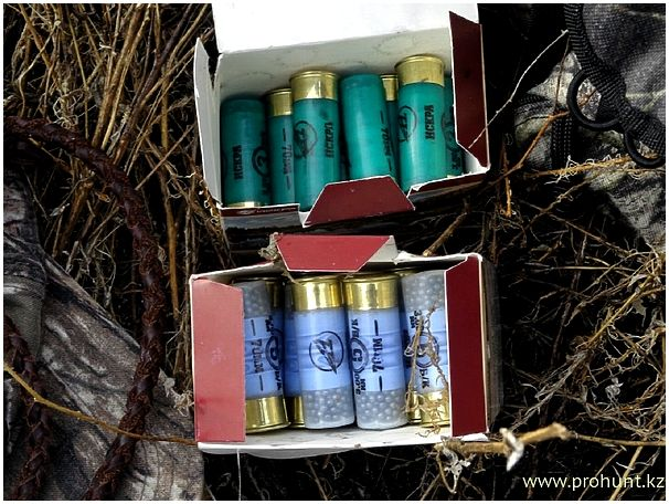 Весенняя охота на уток в Казахстане