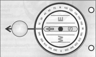 Рис. 2. Спортивный компас (жидкостный)