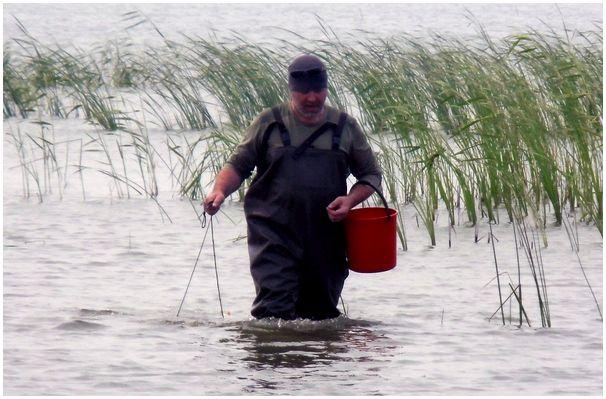 Расстояние для рыбалки не помеха