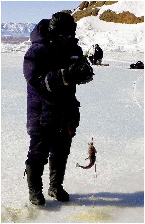 Рыбалка  на донышке Земли